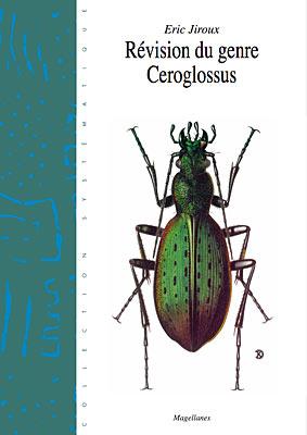 1. Ceroglossus