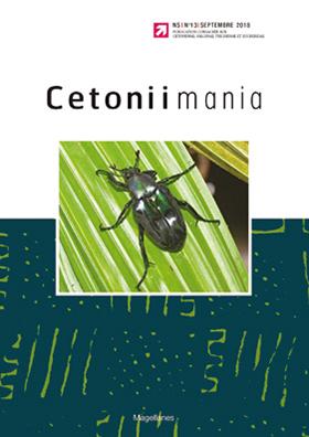 Cetoniimania 13