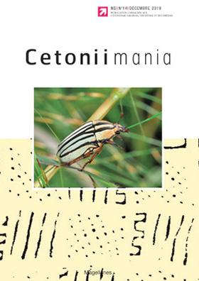 Cetoniimania 14