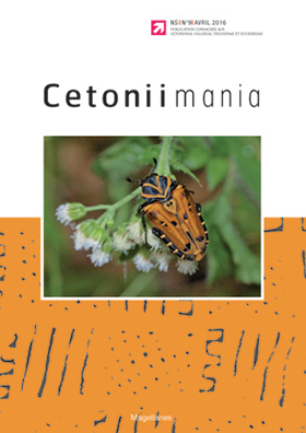 Cetoniimania 9