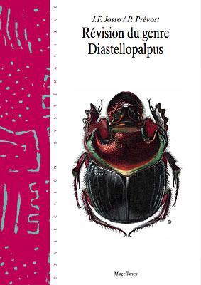 3. Diastellopalpus