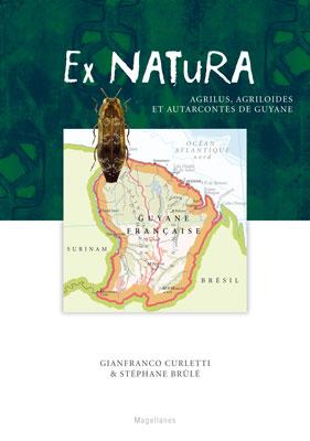 2. Agrilus de Guyane