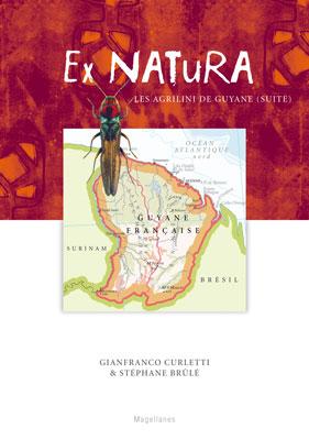 5. Agrilus de Guyane – II