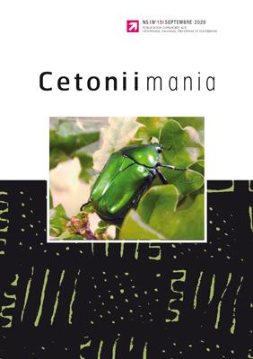 Cetoniimania 15